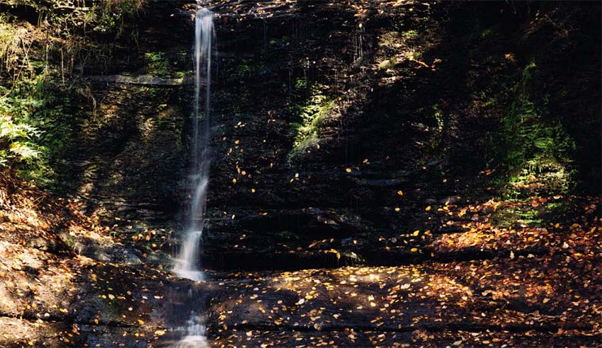 Fall Run Park: The Best Waterfall Near Pittsburgh