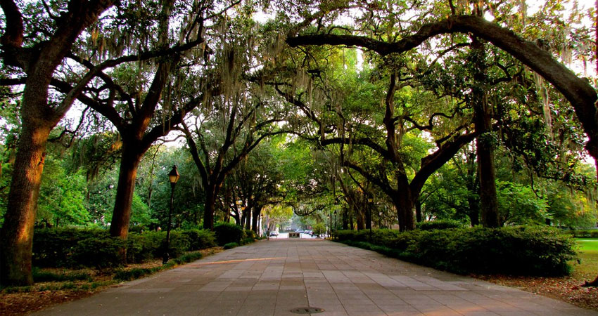 Top 30 Things to Do in Savannah, Georgia in 2019