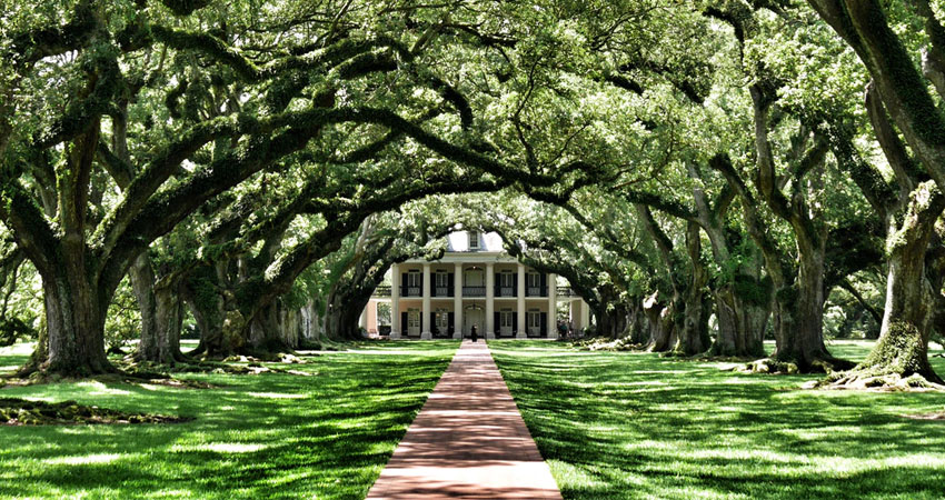 Here Are The Best Things to Do in Louisiana in 2019