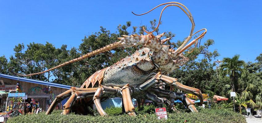 Rain Barrel Village Lobster