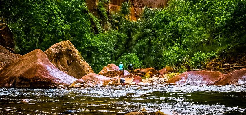 Zion Riverside Walk
