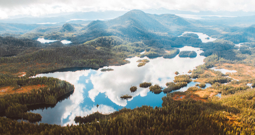 The Top 12 Things To Do In Ketchikan