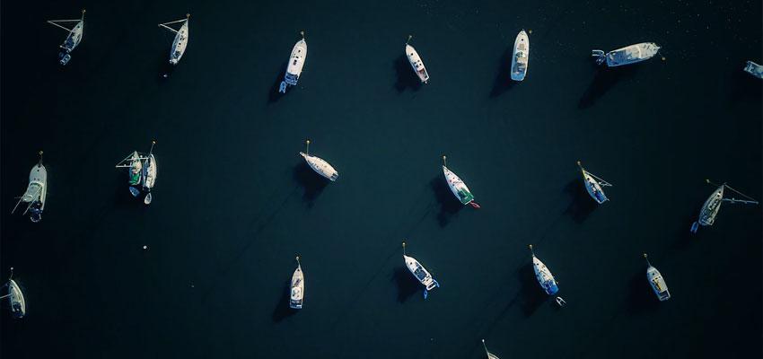 Marthas Vineyard Fishing