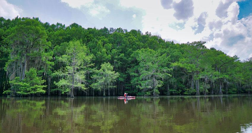 Kayaking on Caddo Lake