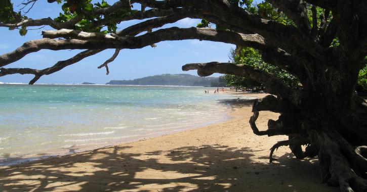 05 Anini Beach - Kalihiwai, Hawaii