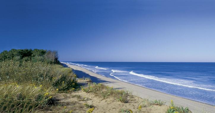 13 Coast Guard Beach - Eastham, Massachusetts